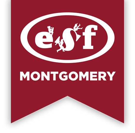 ESF Summer Camps | Montgomery School